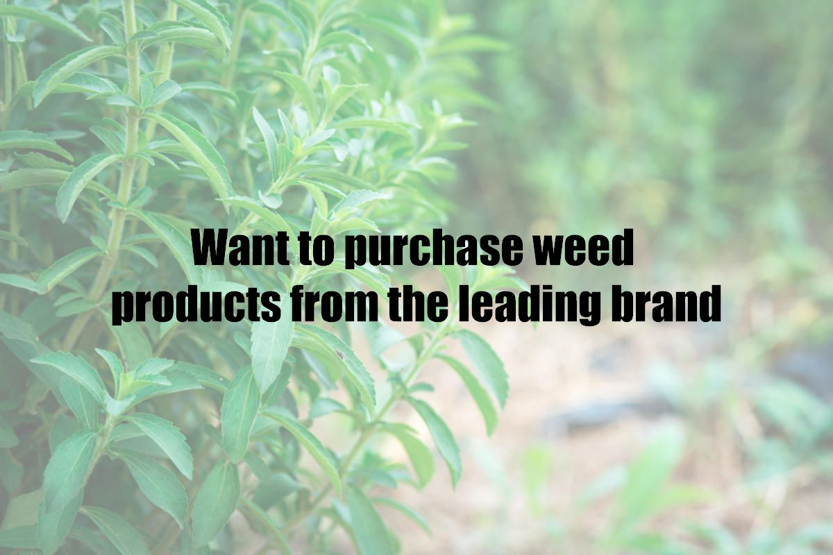Want to purchase weed products from the leading brand